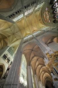 la cathédrale d'Amiens autrement
