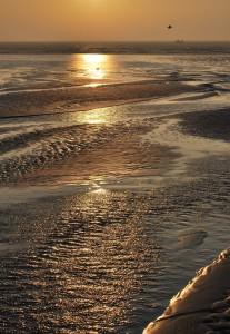 Or à marée basse