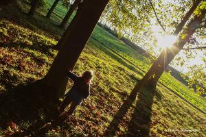 08- soleil d'automne