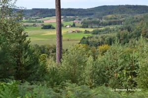 18- Vosges 1