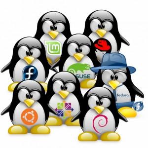 tux-distrib-linux