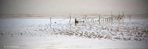 01- pêcheur posant ses leures à marée basse
