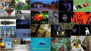 voeux 2015-CIP2