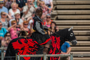 14 -le temps des chevaliers