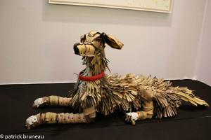 chien-3