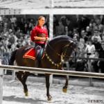 17-cavaliere de Carcassonne